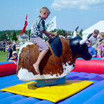 Rodeo Bull hire norway
