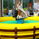 small Rodeo Bull ride